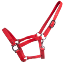 SuperStrap halter